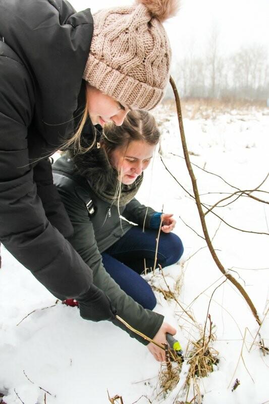 Зима – не помеха садоводам в СПбГАУ, фото-4