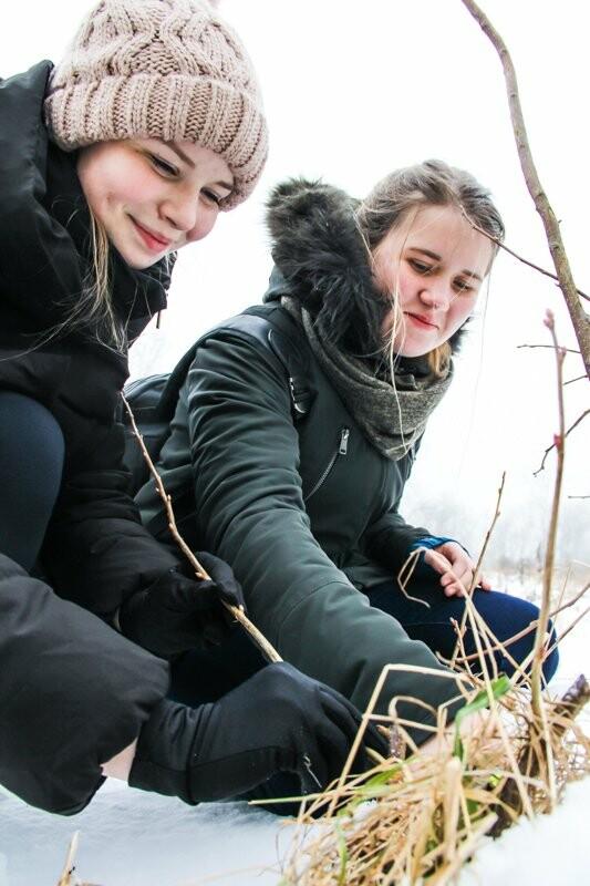 Зима – не помеха садоводам в СПбГАУ, фото-3